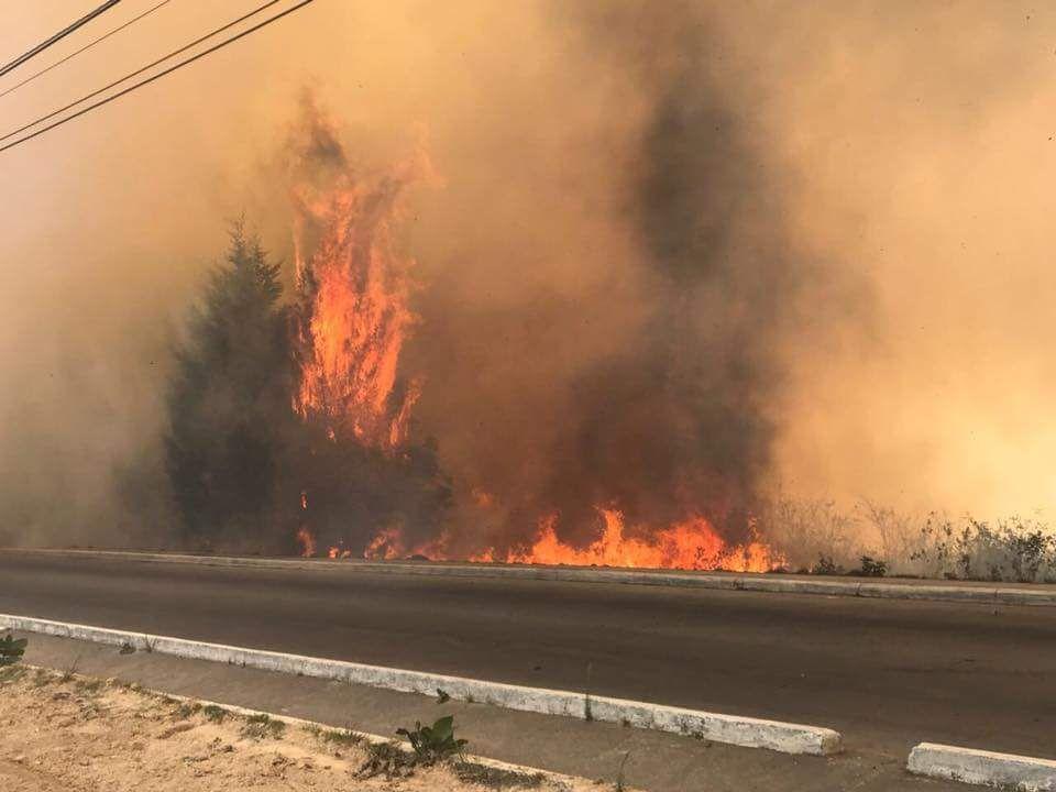 bomberos, incendio, voluntarios, naranjo, forestal