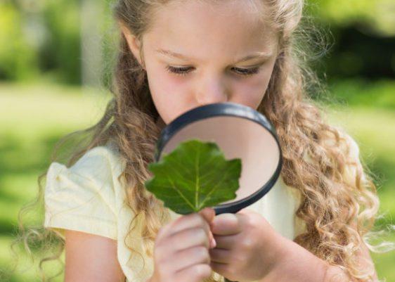 ecología-educación