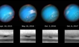 Telescopio Espacial Hubble, tormenta, Neptuno, NASA, ESA, and M.H. Wong and A.I. Hsu