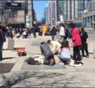 canadà,toronto, atentado, terrorista