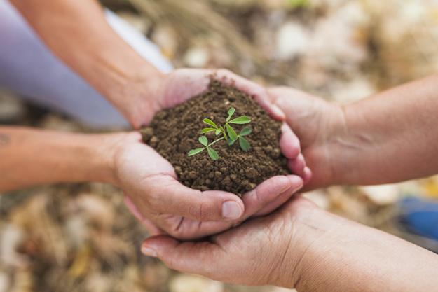 día de la tierra,blog,ecología, zulena, escobedo