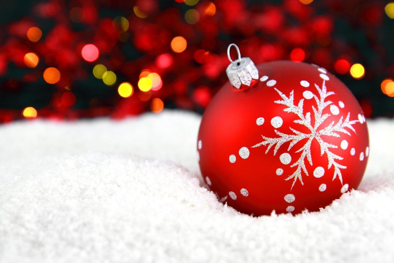 En Estas Fechas Todos Nos Enfocamos En Comprar Regalos Y Armar Arboles De Navidad