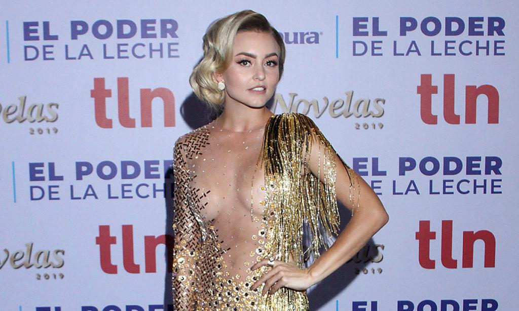 Llega Angelique Boyer a premios TVyNovelas con el vestido al revés